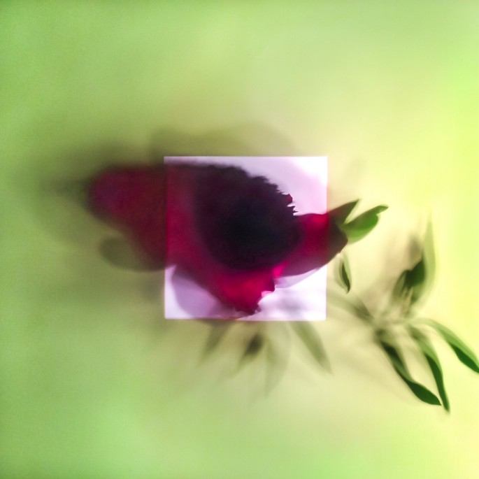 Gayle Saunders, </span><span><em>Plant Dreaming Deep 03</em>, </span><span>2014