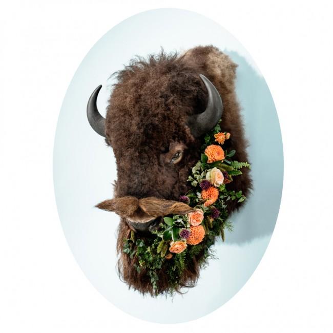 Anna Church, </span><span><em>#Flowerbeard</em>, </span><span>2014