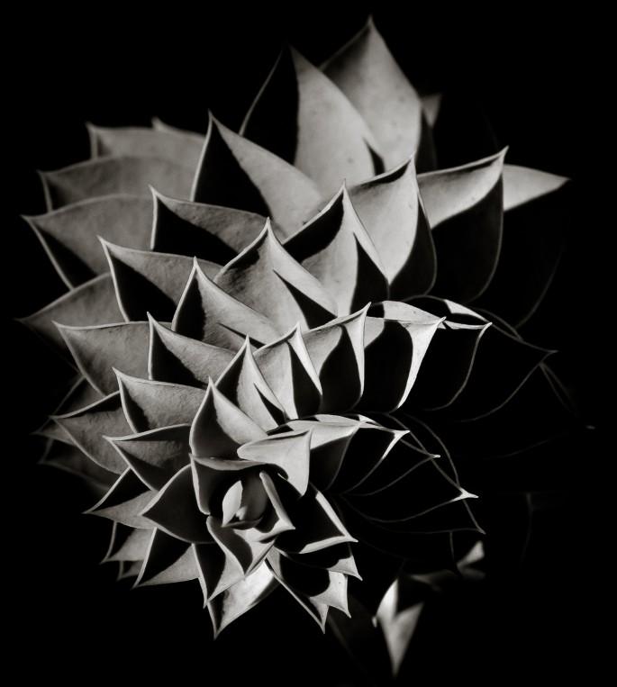 Chris Joakim, </span><span><em>Flight of steps</em>, </span><span>2014