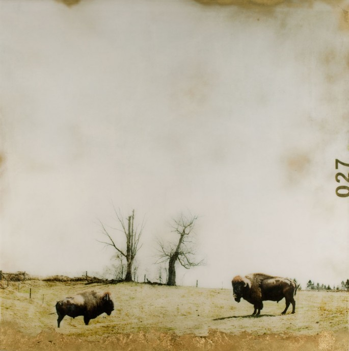 Christine Flynn, </span><span><em>Duel</em>, </span><span>2014