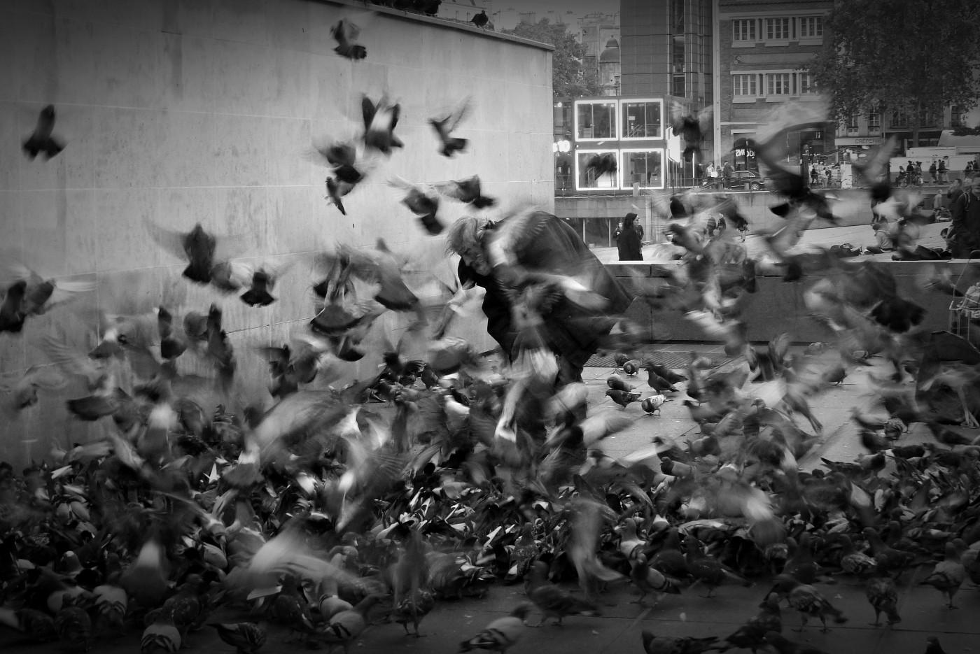 Tatiana Salnikova, </span><span><em>Bird Man, Paris</em>, </span><span>2015