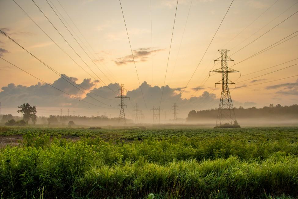 Nila Sivatheesan, </span><span><em>Electric Sunrise</em>, </span><span>2014