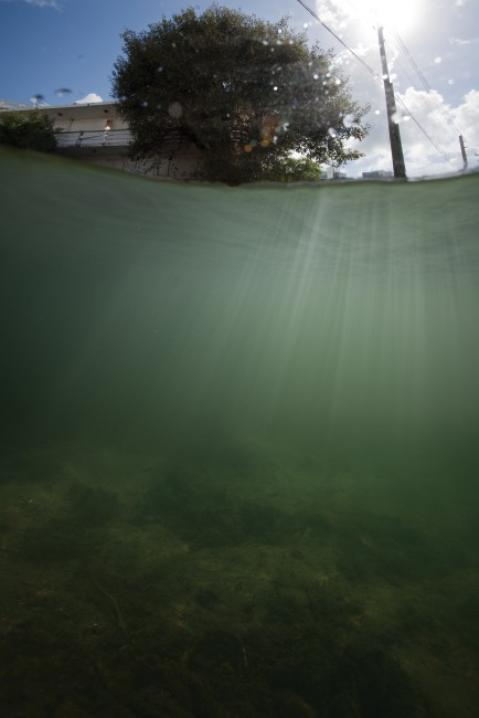 "Isabelle Hayeur, </span><span><em>Manatee Drive 5</em>, </span><span>2013, Archival Pigment Print, 60""x40"", Image courtesy Isabelle Hayeur and ELLEPHANT"