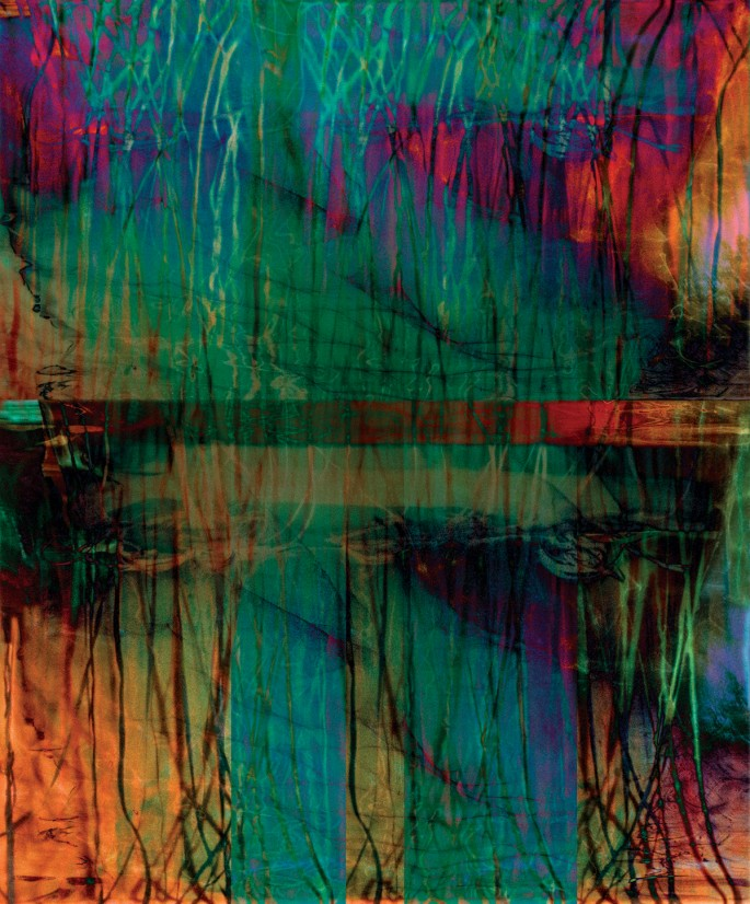 "Joan Kaufman, </span><span><em>Root Series 2.2</em>, </span><span>2015. Archival pigment print, 44 x 36""."