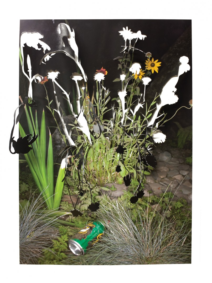 Sarah Anne Johnson, </span><span><em>Drooping Flower and Beer Can</em>, </span><span>2015. Chromogenic print, 30 x 20&quot;. Courtesy Stephen Bulger Gallery, Toronto; Galerie Division, Montreal; Julie Saul Gallery, New York.