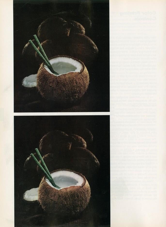 Kotama Bouabane, </span><span><em>CC50G</em>, </span><span>2015. Chromogenic print, 10 x 8&quot;. Courtesy of the artist.