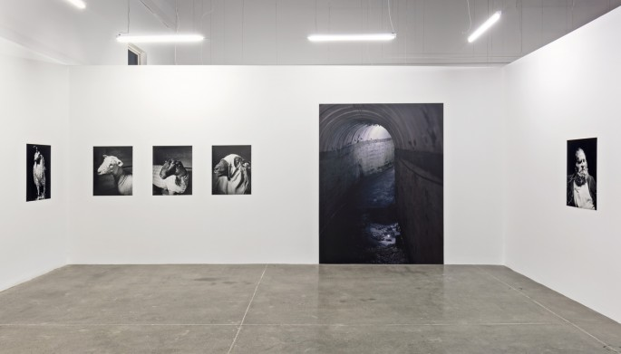 Installation view of Alec Soth, </span><span><em>Hypnagogia</em>, </span><span>Photo: Toni Hafkenscheid