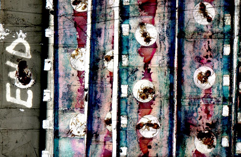 Luther Price, </span><span><em>Number 9</em>, </span><span>2012. Handmade photographic slide installation.
