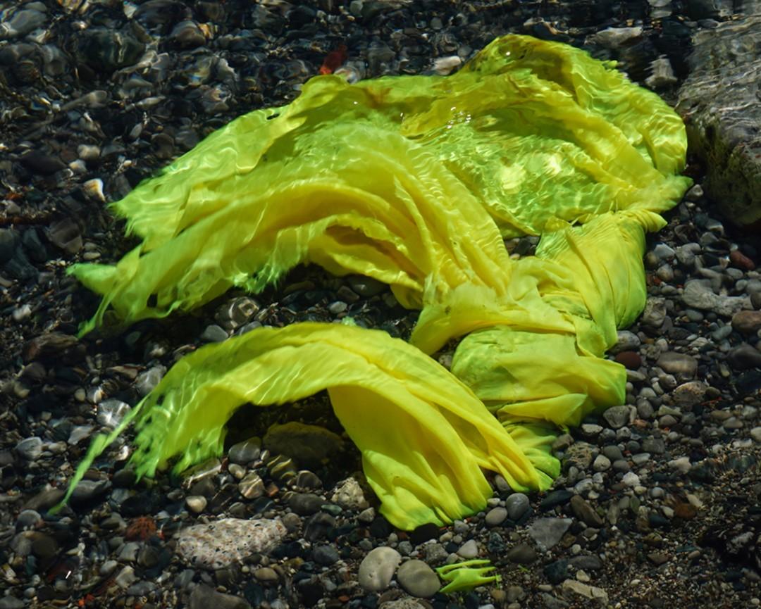 Brian Anderson, Yellow Cloth, 2016