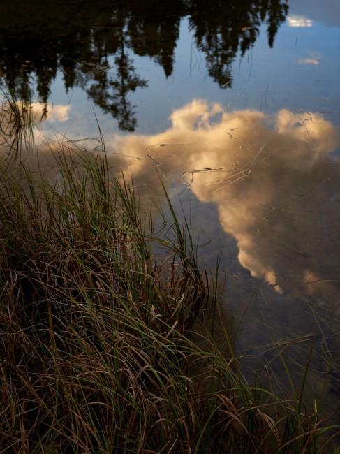Guillaume Simoneau, </span><span><em>Lakeside Dawn, ELA, Canada</em>, </span><span>2015