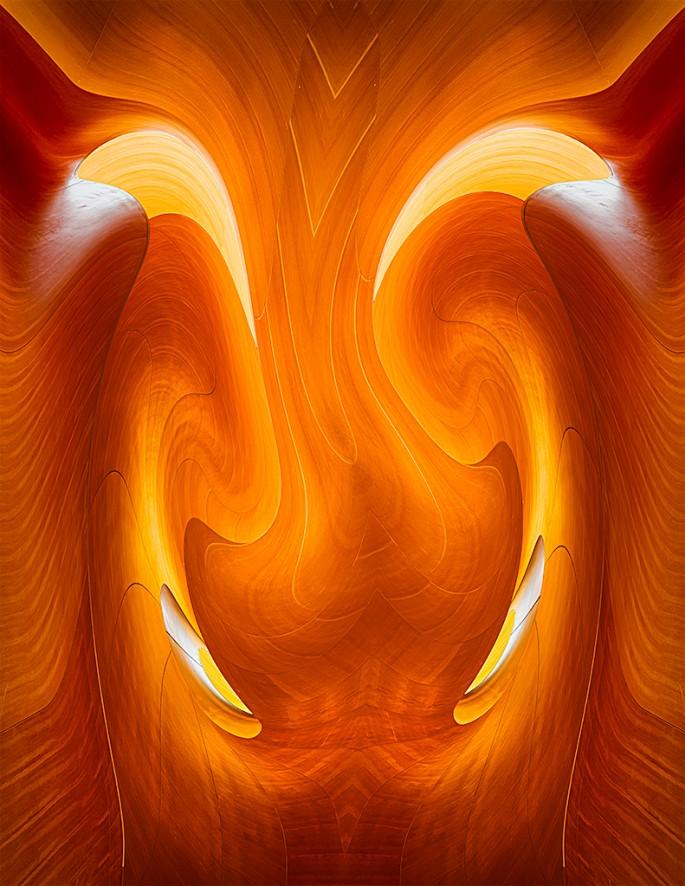 Pavel Muller, </span><span><em>Organic Symmetry</em>, </span><span>2015-2016
