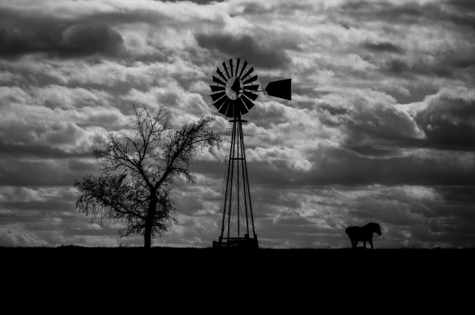 Phil Desjardins, </span><span><em>Cheyenne Autumn</em>, </span><span>2016