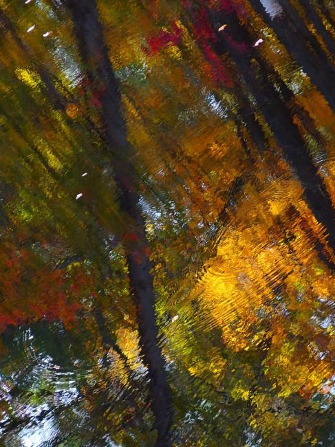 Judith Carol Coulter , </span><span><em>Mens ephemera (Something Remembered)</em>, </span><span>2015