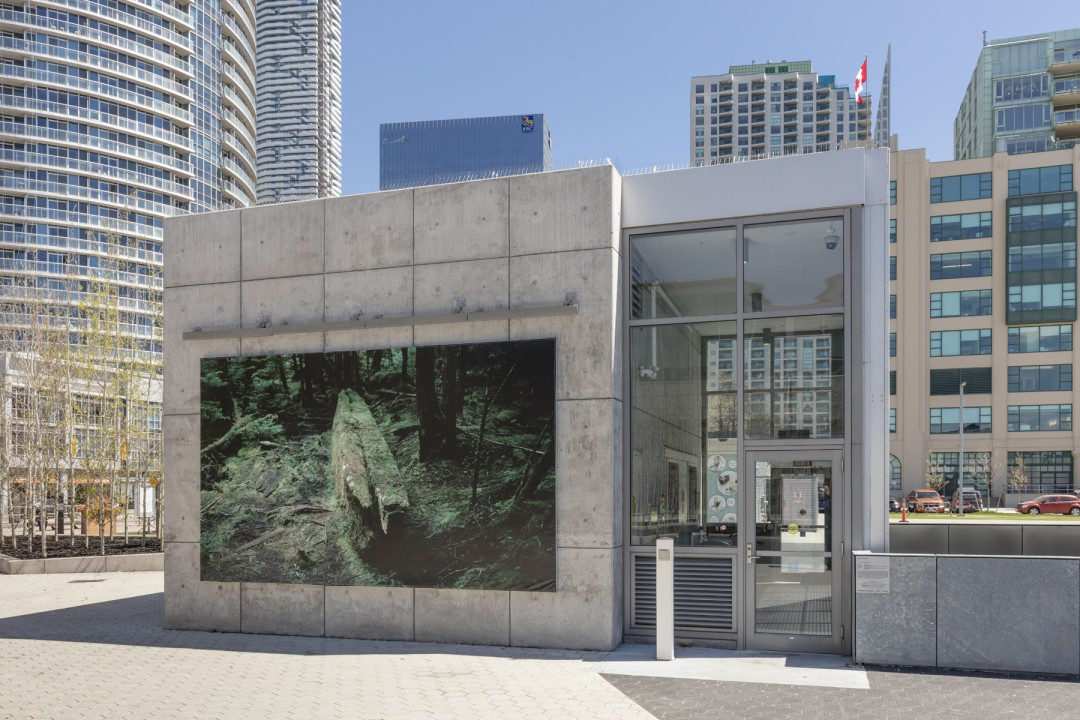 Johan Hallberg-Campbell, </span><span><em>Coastal</em>, </span><span>Installation view at Harbourfront Centre, parking pavilion, 2017. Photo by Toni Hafkenscheid.