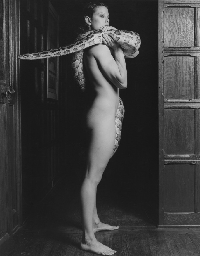 Robert Mapplethorpe, </span><span><em>Lisa Lyon</em>, </span><span>1982. Gelatin silver print, 20x16&quot;. © Robert Mapplethorpe Foundation. Used by permission.