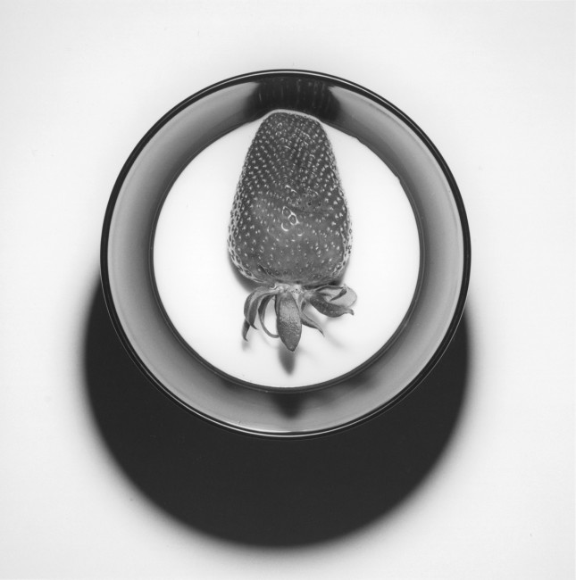Robert Mapplethorpe, </span><span><em>Strawberry</em>, </span><span>1985. Gelatin silver print, 20x16&quot;. © Robert Mapplethorpe Foundation. Used by permission.