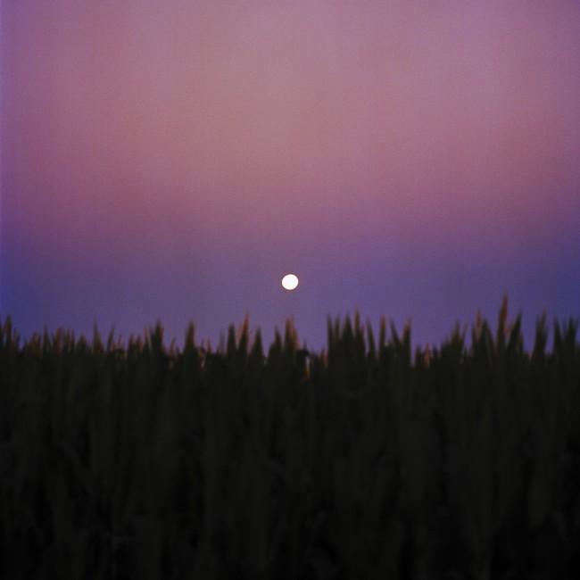 Andrew Blake McGill, </span><span><em>Moonrise</em>, </span><span>2016. Inkjet print on vinyl, 110x110&quot;.