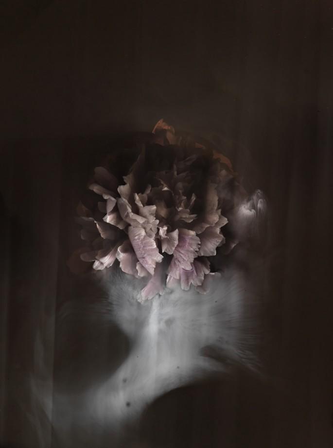Franklin Lau, </span><span><em>Cloud Love</em>, </span><span>2012