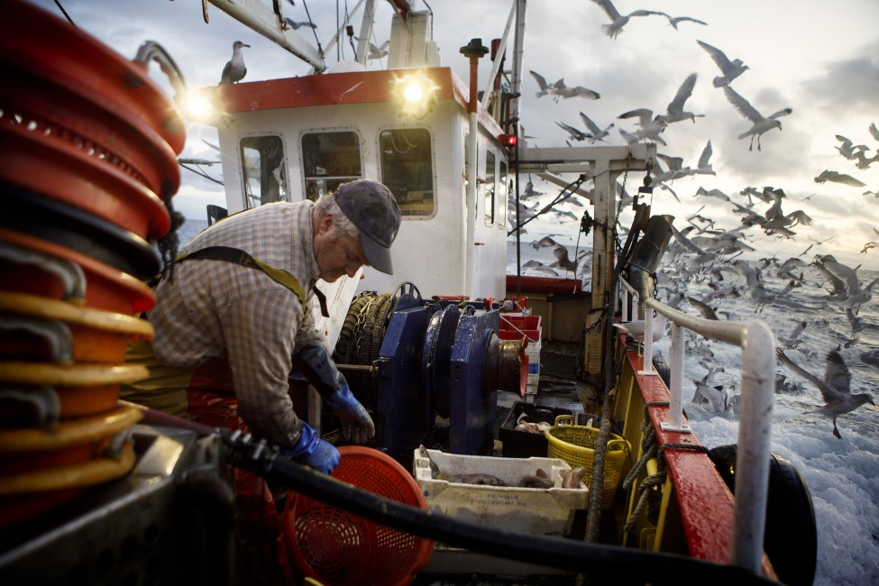 Annie Sakkab, </span><span><em>Skipper Tom McClure discards the innards of gutted fish back into the sea</em>, </span><span>2017