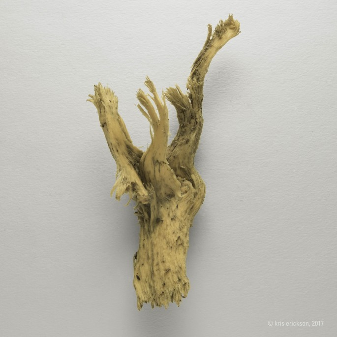 kris erickson, </span><span><em>Untitled</em>, </span><span>2017