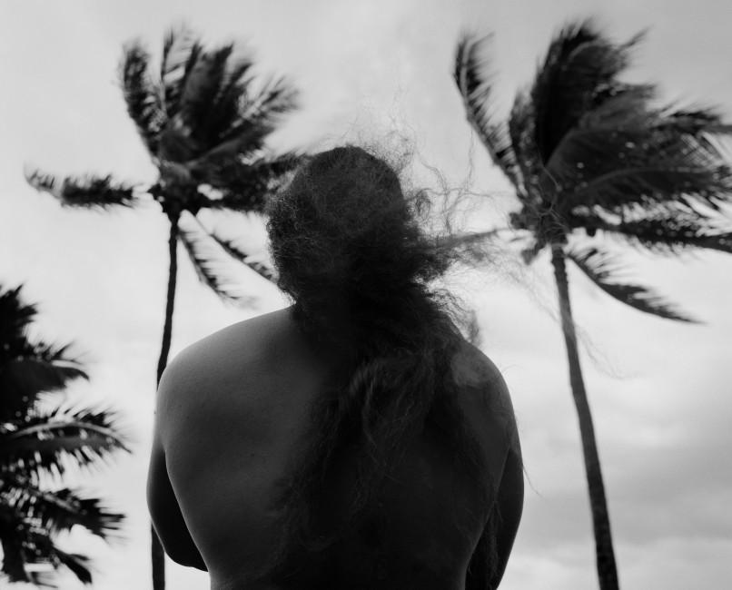 Brendan George Ko, </span><span><em>Ipo's Hair</em>, </span><span>2017