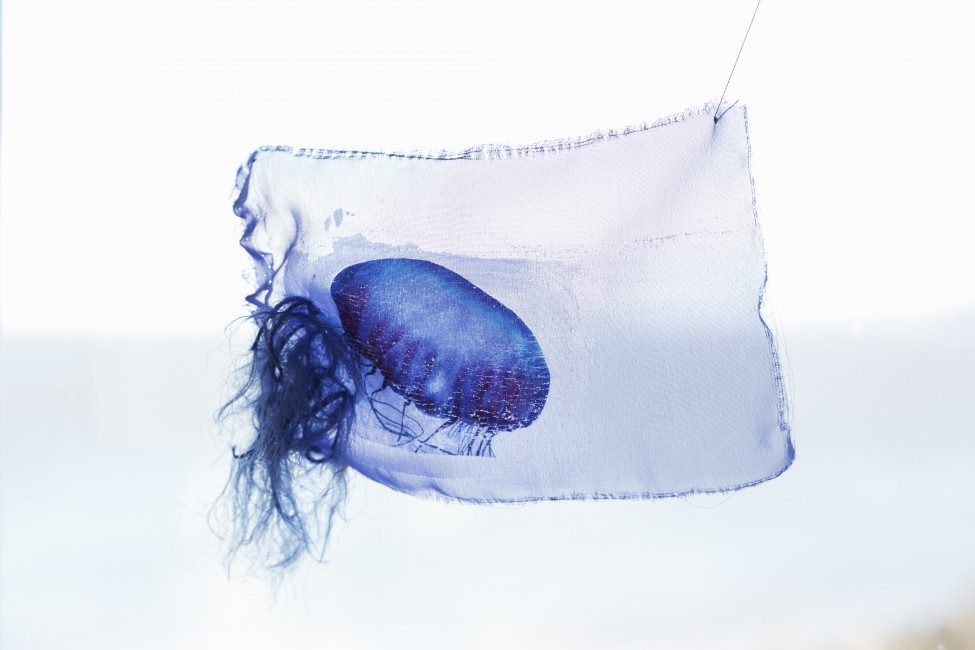 Jessica Lin, </span><span><em>Jellyfish #7</em>, </span><span>2017