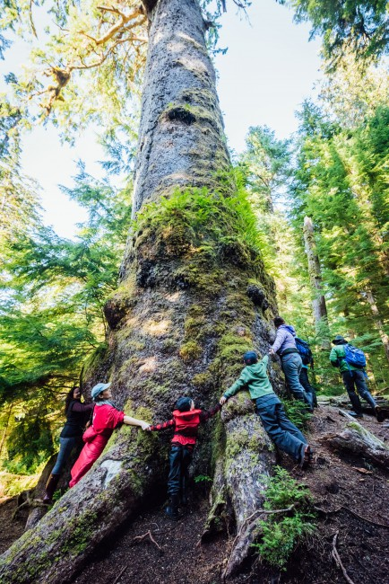 <em>Hugging 1000 years of life and history in Gwaii Haanas</em>, </span><span>2017