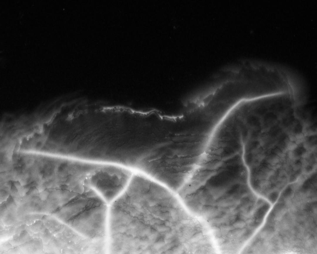 """Marie-Jeanne Musiol, Plant Cosmos no. 2, Electromagnetic capture on silver gelatin negative, Archival pigment print, 24 x 32"""". Courtesy of Pierre-François Ouellette art contemporain."""