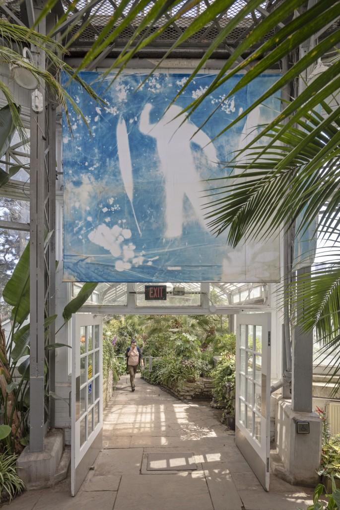 Sofia Mesa, </span><span><em>Guardians</em>, </span><span>2018. Installation at Allan Gardens Conservatory, Toronto. Photo by Toni Hafkenscheid.