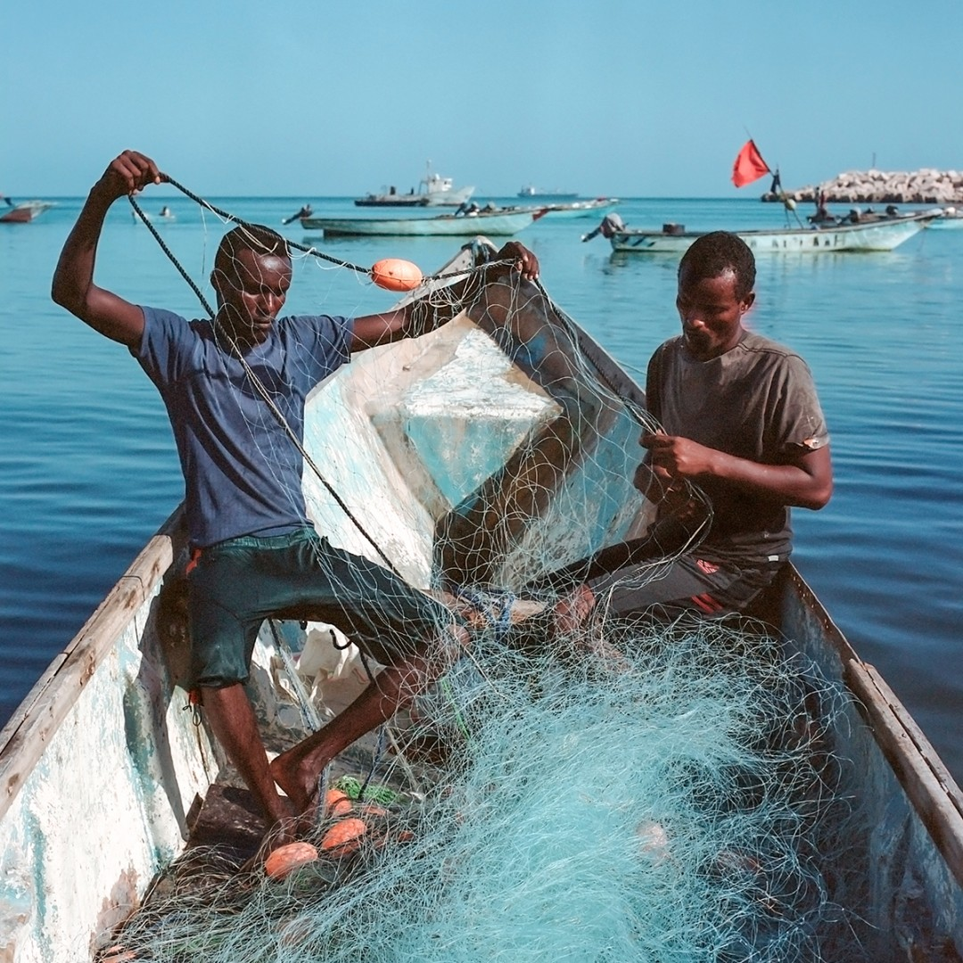 Nichole Sobecki, Ahmed and Hamza untangle their nets, May 2016. Archival pigment print, 20 × 20.