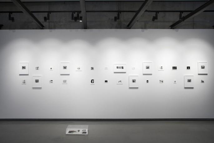 Deanna Pizzitelli, </span><span><em>New Generation Photography Award</em>, </span><span>Exhibition at On Site Gallery, May - June 2018. Photo by Yuula Benivolski
