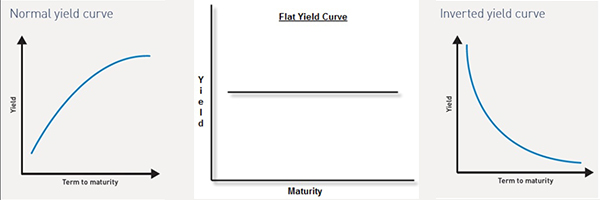 Fixed income analysis Yield curve