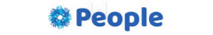 The Accounting People Logo