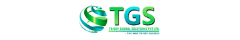 Tricky Global Solutions Logo