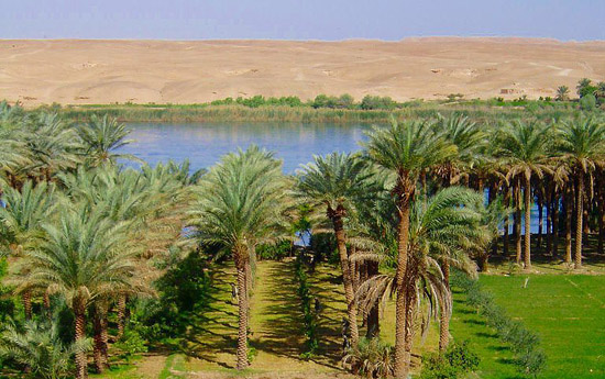 Photograph of the Euphrates. The land right by the river is green and fertile, but desert is visible from the river bank.