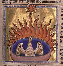 An illustration of a phoenix. The bird and the background for the image are both gold.