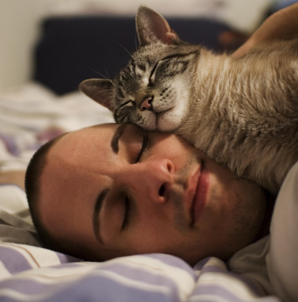 Photograph of a man asleep, with a a cat, also asleep, snuggled across his cheek.