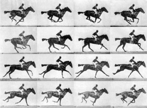 "Eadweard Muybridge, Thoroughbred bay mare ""Annie G."" galloping, Human and Animal Locomotion, plate 626, 1887"