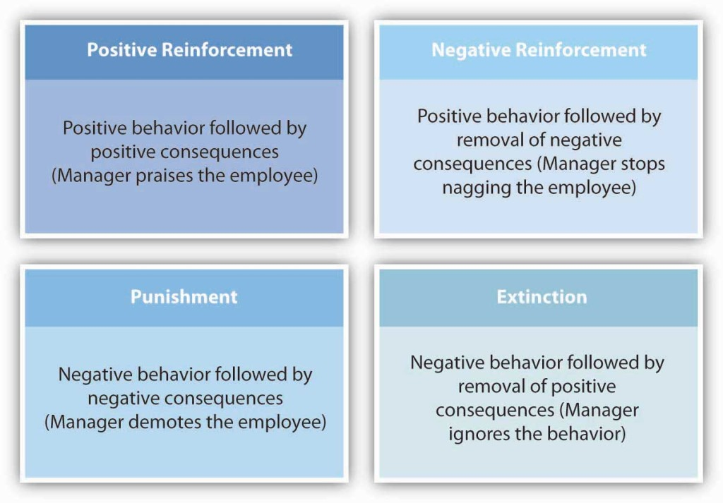 Four kinds of reinforcement. 1. Positive reinforcement: positive behavior followed by positive consequences (manager praises the employee). 2. Negative reinforcement: positive behavior followed by removal of negative consequences (manager stops nagging the employees). 3. Punishment: negative behavior followed by negative consequences (manager demotes the employee). 4. Extinction: negative behavior followed by removal of positive consequences (manager ignores the behavior)
