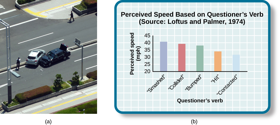 """Photograph A shows two cars that have crashed into each other. Part B is a bar graph titled """"perceived speed based on questioner's verb (source: Loftus and Palmer, 1974)."""" The x-axis is labeled """"questioner's verb, and the y-axis is labeled """"perceived speed (mph)."""" Five bars share data: """"smashed"""" was perceived at about 41 mph, """"collided"""" at about 39 mph, """"bumped"""" at about 37 mph, """"hit"""" at about 34 mph, and """"contacted"""" at about 32 mph."""