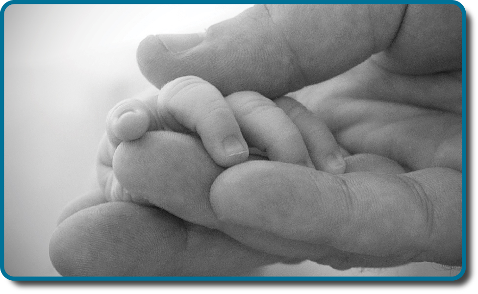A picture shows two intertwined hands. One is the large hand of an adult, and the other is the tiny hand of an infant. The infant's entire hand grasp is about the size of a single adult finger.