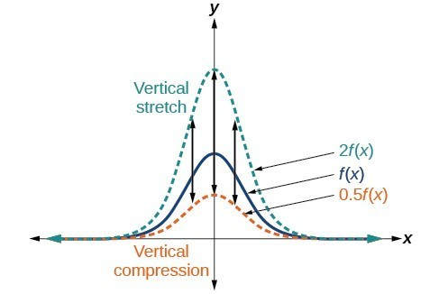how to find vertical stretch on exponential graph