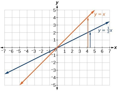 graph showing the lines y = x and y = (1/2)x