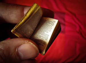 Photo of a tiny dictionary, held between a person's thumb and forefinger, against a red background