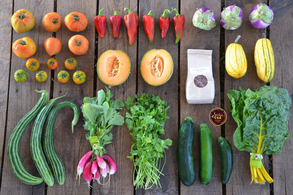 Photo of the fruits and vegetables in a CSA box from a farm in California. Pictured are French radishes, cucumbers, yellow Swiss chard, red peppers, yellow squash, tomatoes, cilantro, eggplants, and almonds