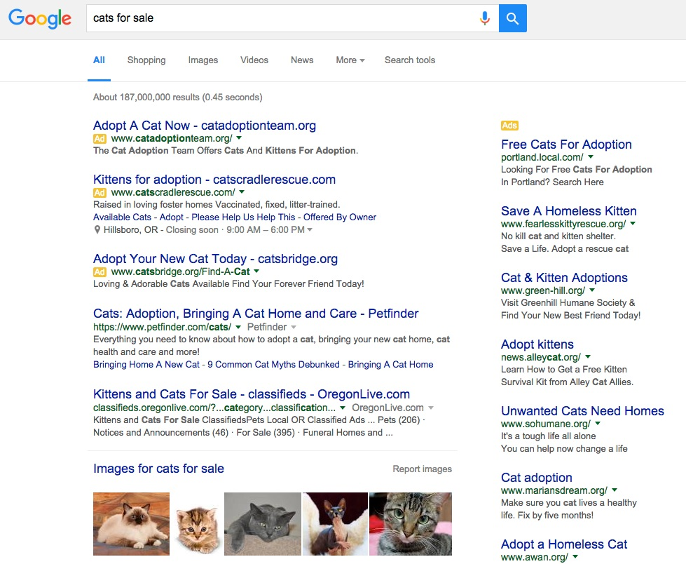 "Screenshot of a Google search for the phrase ""cats for sale."" The Google results include various cat adoption websites and a selection of adorable cat pictures."