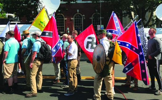A photograph shows a group of people holding confederate flags and a Nazi flag