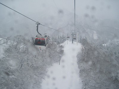 Ski gondolas travel along suspension cables. A vast forest and snowy mountain peaks can be seen in the background.