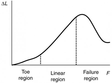 The strain on mammalian tendon is shown by a graph, with strain along the x axis and tensile stress along the y axis. The stress strain curve obtained has three regions, namely, toe region at the bottom, linear region between, and failure region at the top.