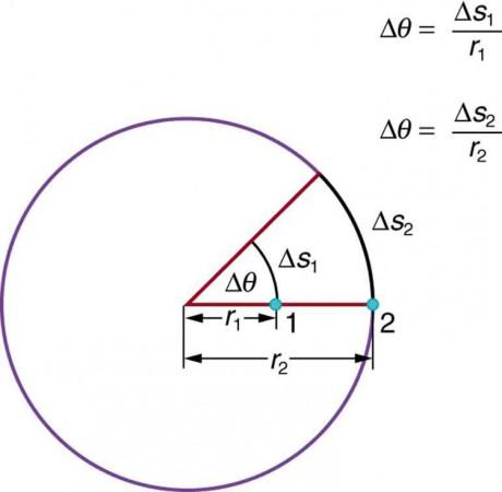 Rotation Angle and Angular Velocity | Physics